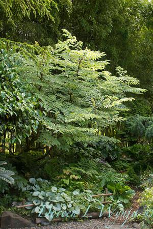 Northwest Garden Nursery__040