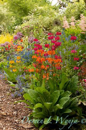 Northwest Garden Nursery__022