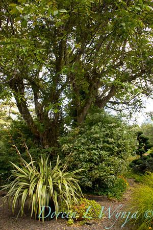 Northwest Garden Nursery__056