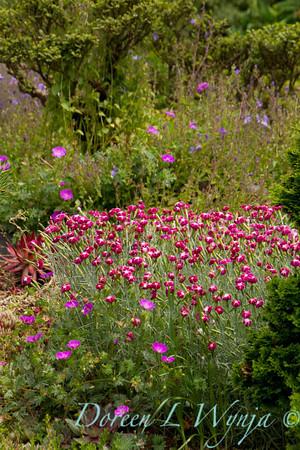 Northwest Garden Nursery__047