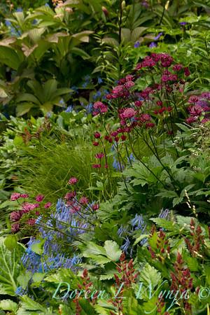 Northwest Garden Nursery__015