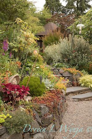 Olga and Ron's Asian Garden_1008