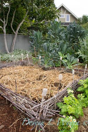 Urban Vegetable Garden - composting_3682