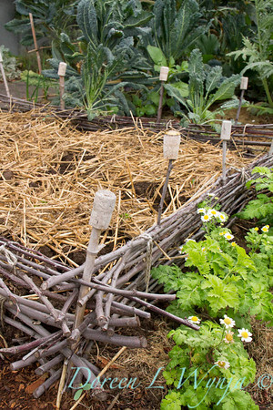 Urban Vegetable Garden - composting_3711