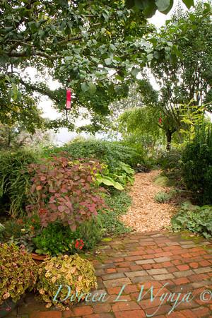 garden path_3950