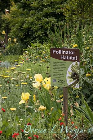 Pollinator Garden sign_7711
