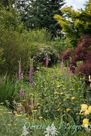 Pollinator garden_2052
