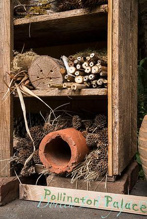 pollinator house_1237