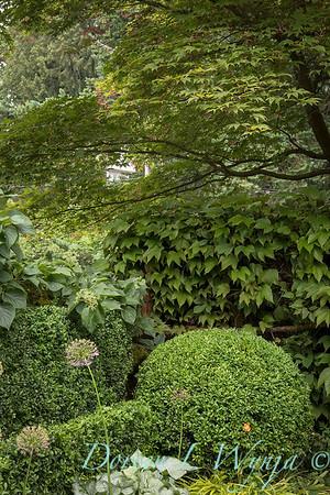 Ann and Jim's Garden_109