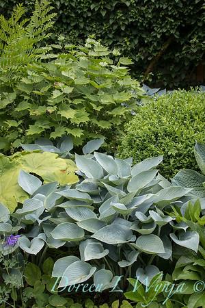 Ann and Jim's Garden_155