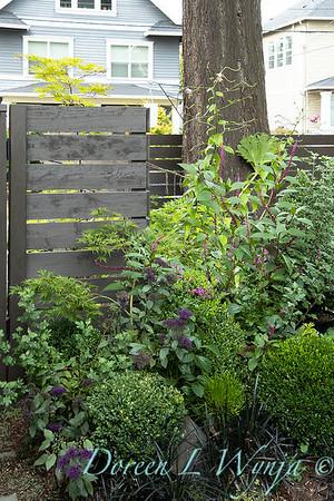Wes Younie - garden designer_3009