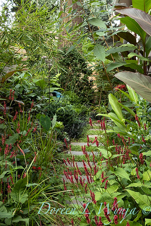 Persicaria walkway - tropical landscape_3011