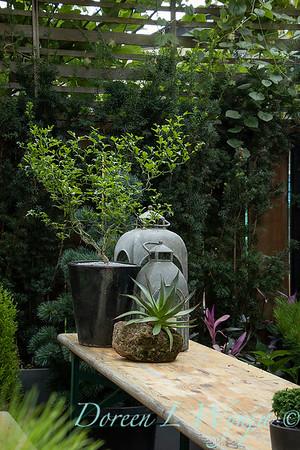 Wes Younie - garden designer_3006