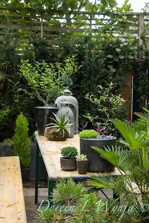 Wes Younie - garden designer_3007