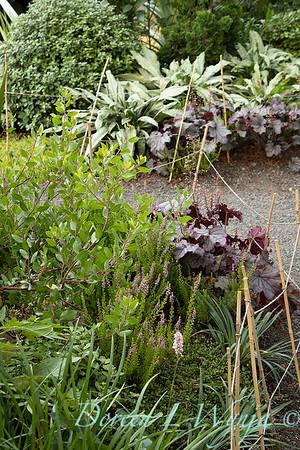 Wes Younie - garden designer_3003