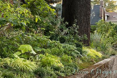 Wes Younie - garden designer_3002