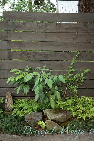 Wes Younie - garden designer_3004