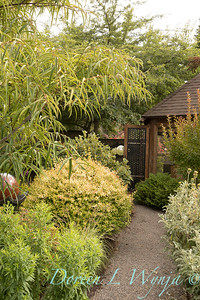Olga and Ron's Asian Garden_1038