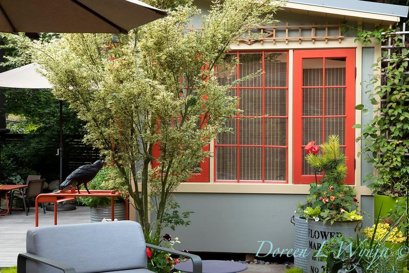 Orange acents in the Garden_6527