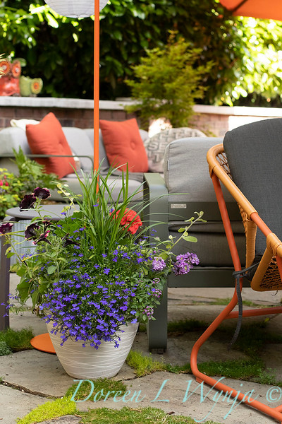 Orange acents in the Garden_6520