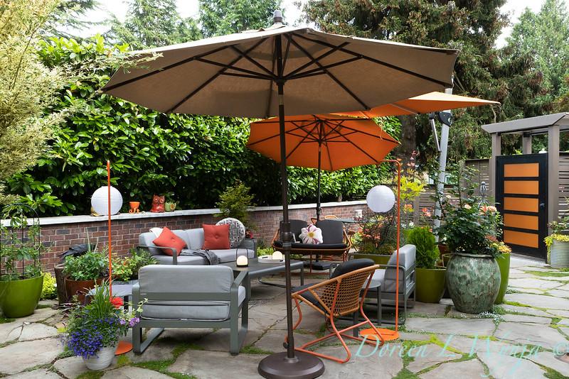 Orange acents in the Garden_6525