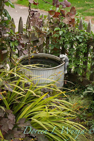 rain water barrel_3874
