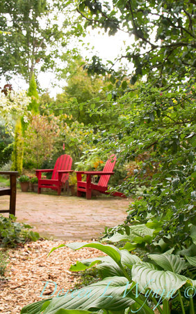 garden pathway red adirondack chairs_3948