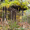 rusted fencing_0387
