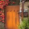 Parthenocissus tricuspidata 'Veitchii' - rusted mailboxes - entry gate_0382