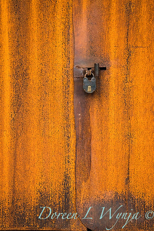 Rusted door lock_0374