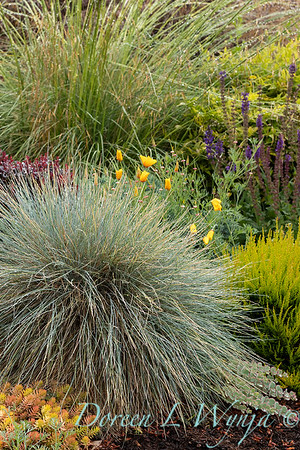 Stacie Crooks - a garden of color and texture_2044