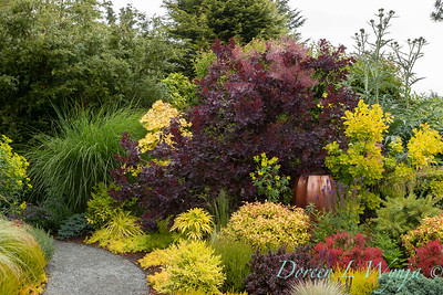 Stacie Crooks - a garden of color and texture_2039