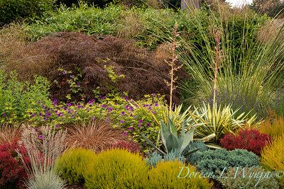 Stacie Crooks - a garden of color and texture_2028
