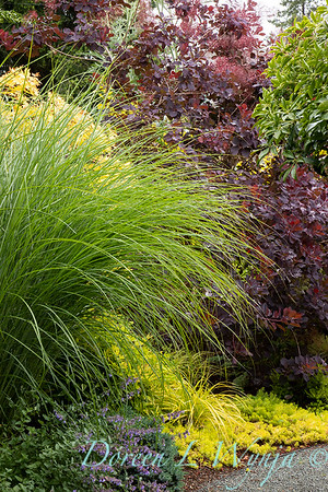 Stacie Crooks - a garden of color and texture_2041