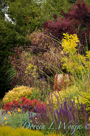 Stacie Crooks - a garden of color and texture_2033