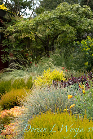 Stacie Crooks - a garden of color and texture_2036