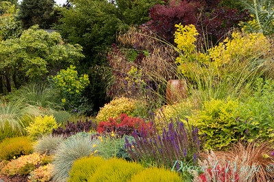 Stacie Crooks - a garden of color and texture_2030