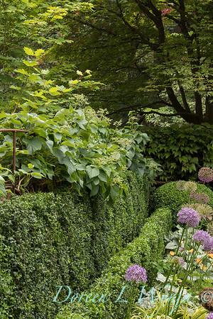 Ann and Jim's Garden_112