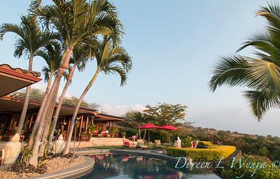 Backyard swimming pool_9125