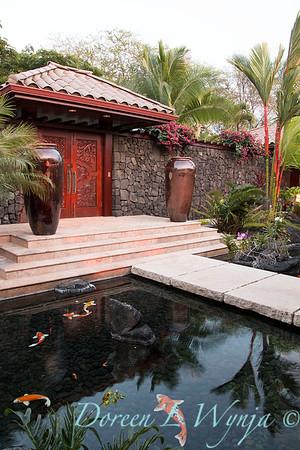 Entryway - koi pond - footbridge_9163