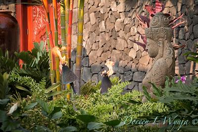 Giest Garden_9250