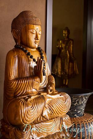 Buddha_9024