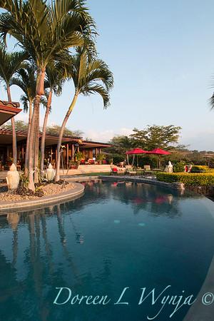 Backyard swimming pool_9127