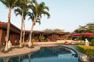 Backyard swimming pool_9131