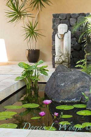 Tropical Goddess - pond - lotus_3584