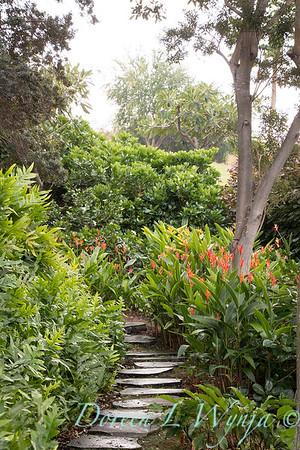Tropical garden path - Heliconia psittacorum - Phymatosorus fern_3535