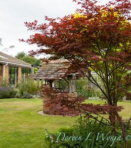 Beechleigh Garden - Jacky O'Leary garden designer_2993