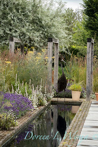 Beechleigh Garden - Jacky O'Leary garden designer_2976