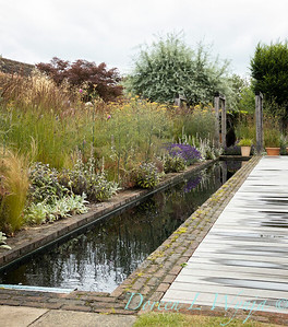 Beechleigh Garden - Jacky O'Leary garden designer_2973