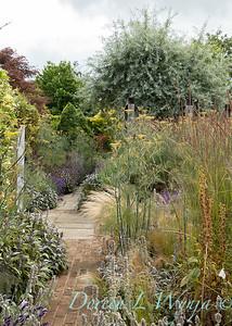 Beechleigh Garden - Jacky O'Leary garden designer_2978